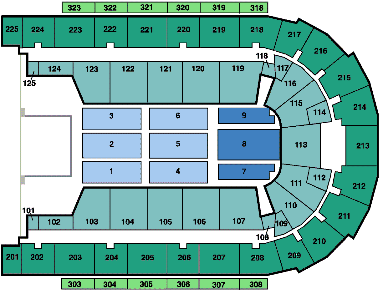 Arena End Stage Concert
